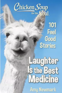 Chicken Soup Books Provide Humor During Covid Stacey Gustafson